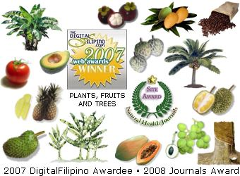 Philippine Plants, Fruits & Trees Picture